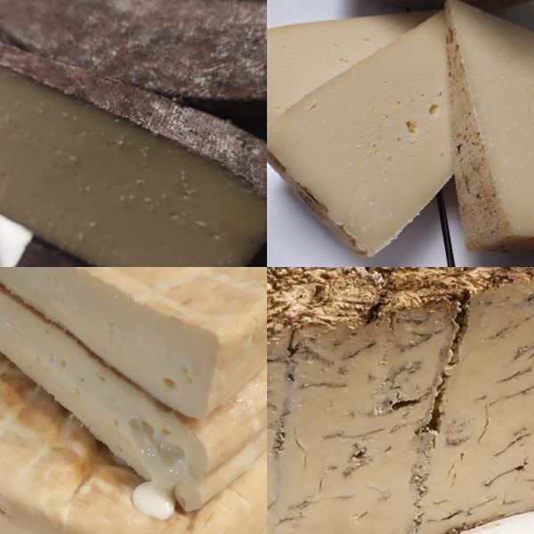 Classic Selection of cheeses composite