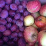 Plums and apples slightly out of focus